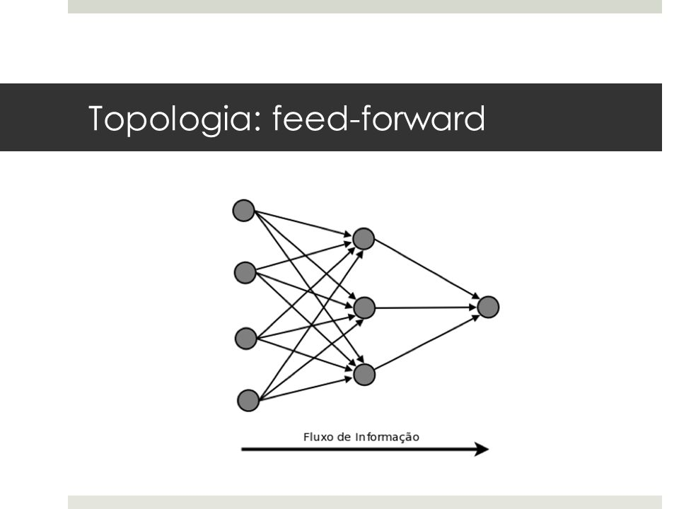 Topologia: feed-forward