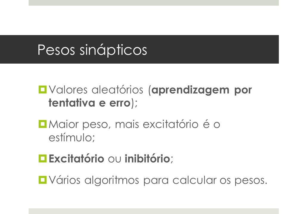 Pesos sinápticos Valores aleatórios (aprendizagem por tentativa e erro); Maior peso, mais excitatório é o estímulo;