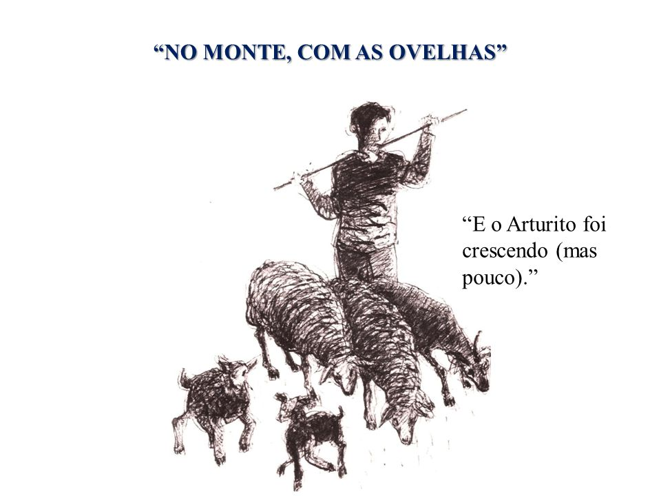 NO MONTE, COM AS OVELHAS