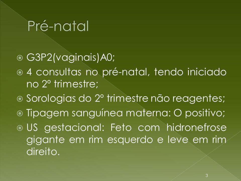 G3P2(vaginais)A0; 4 consultas no pré-natal, tendo iniciado no 2º trimestre; Sorologias do 2º trimestre não reagentes;