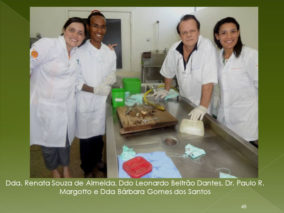 Dda. Renata Souza de Almeida, Ddo Leonardo Beltrão Dantes, Dr. Paulo R