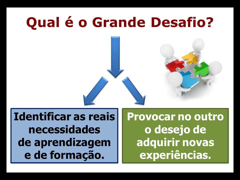 Qual é o Grande Desafio Identificar as reais necessidades de aprendizagem e de formação.