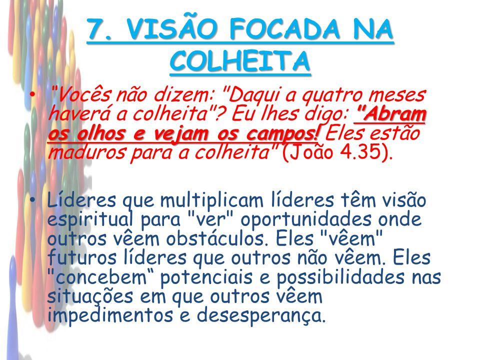 7. VISÃO FOCADA NA COLHEITA