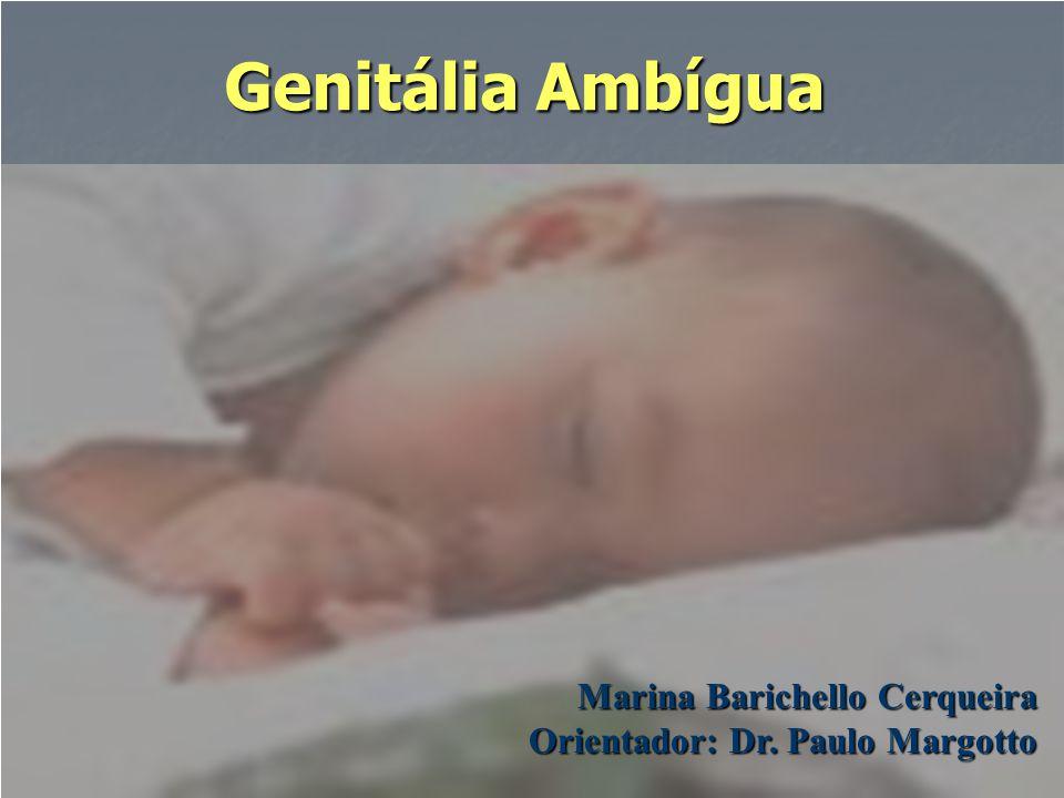 Genitália Ambígua Marina Barichello Cerqueira