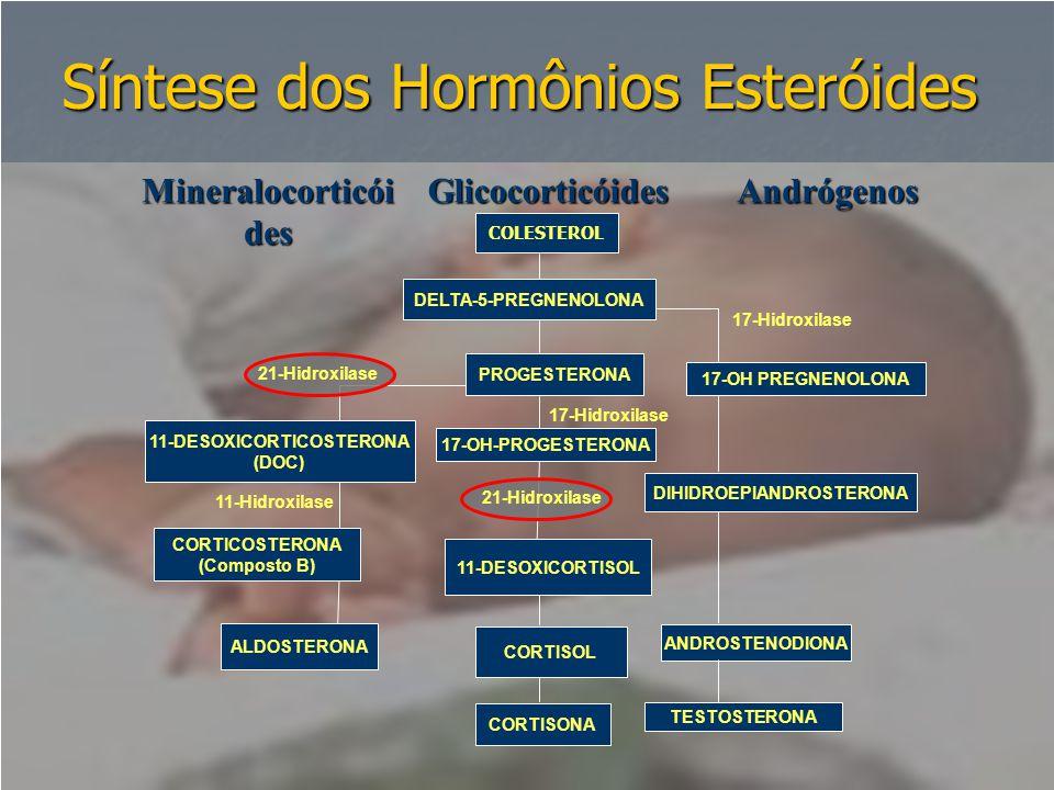 Síntese dos Hormônios Esteróides