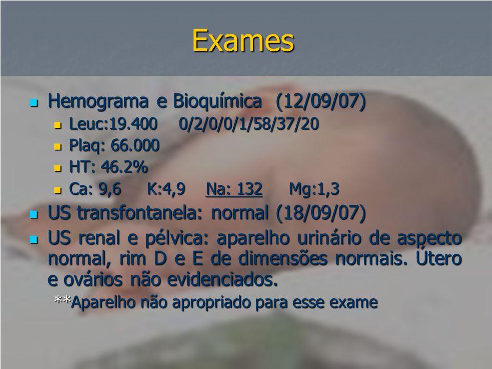 Exames Hemograma e Bioquímica (12/09/07)