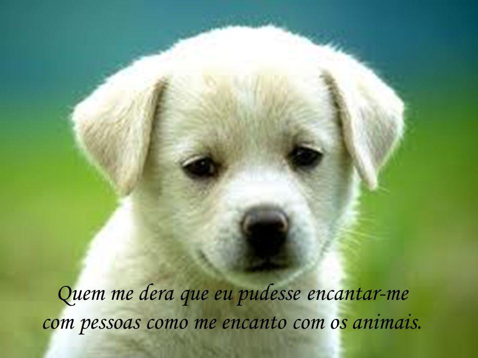 Quem me dera que eu pudesse encantar-me com pessoas como me encanto com os animais.
