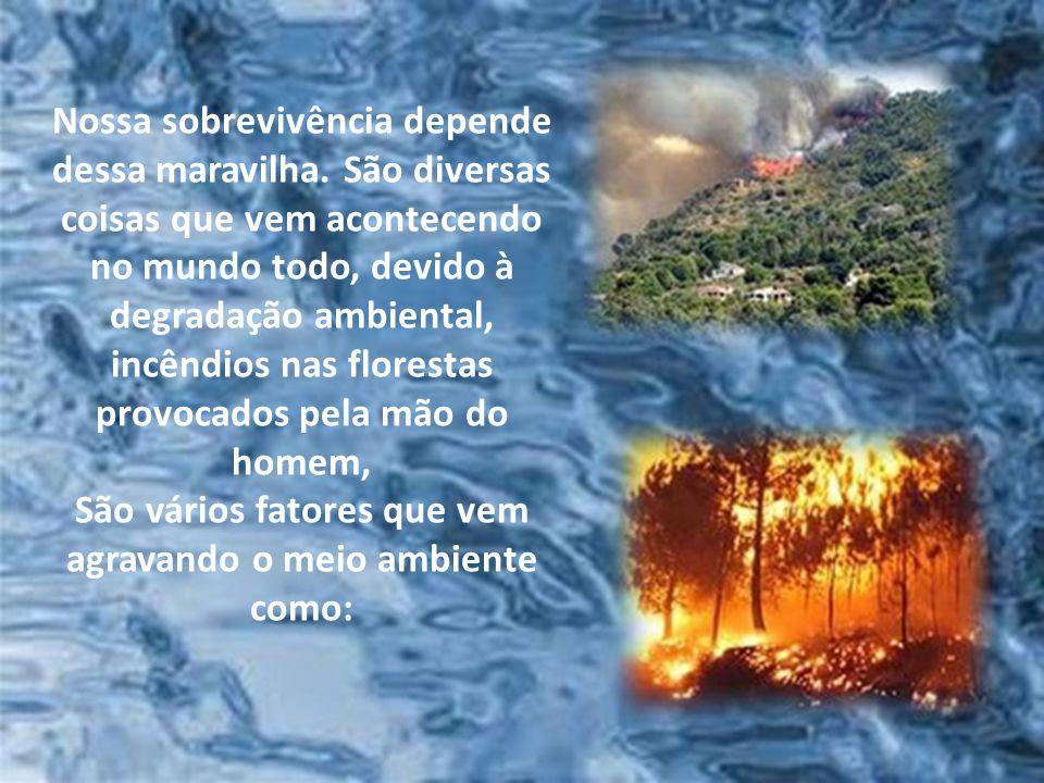 São vários fatores que vem agravando o meio ambiente como: