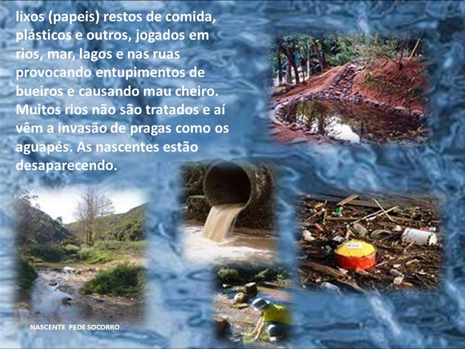 lixos (papeis) restos de comida, plásticos e outros, jogados em rios, mar, lagos e nas ruas provocando entupimentos de bueiros e causando mau cheiro. Muitos rios não são tratados e aí vêm a invasão de pragas como os aguapés. As nascentes estão desaparecendo.