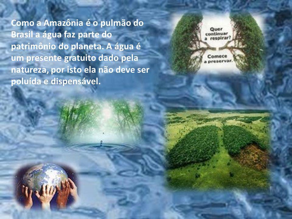 Como a Amazônia é o pulmão do Brasil a água faz parte do patrimônio do planeta.