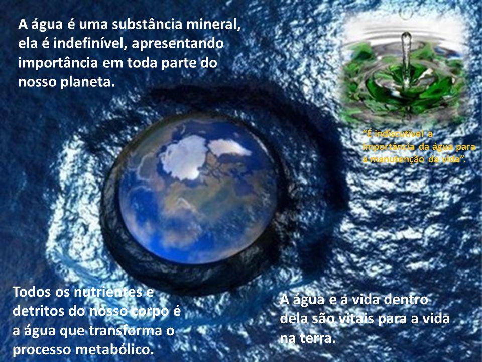 A água e a vida dentro dela são vitais para a vida na terra.