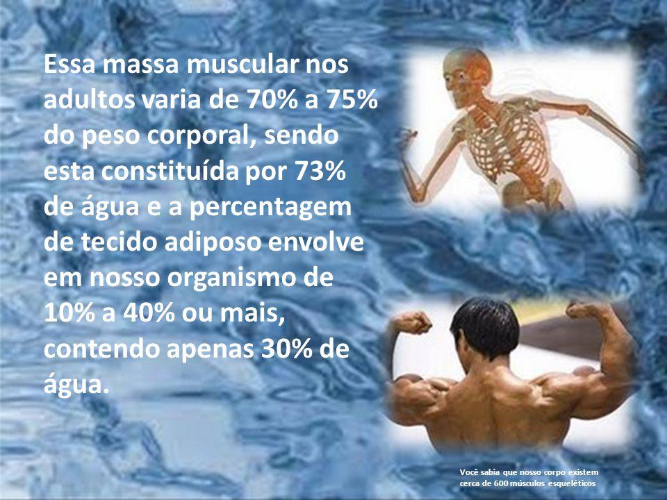 Essa massa muscular nos adultos varia de 70% a 75% do peso corporal, sendo esta constituída por 73% de água e a percentagem de tecido adiposo envolve em nosso organismo de 10% a 40% ou mais, contendo apenas 30% de água.
