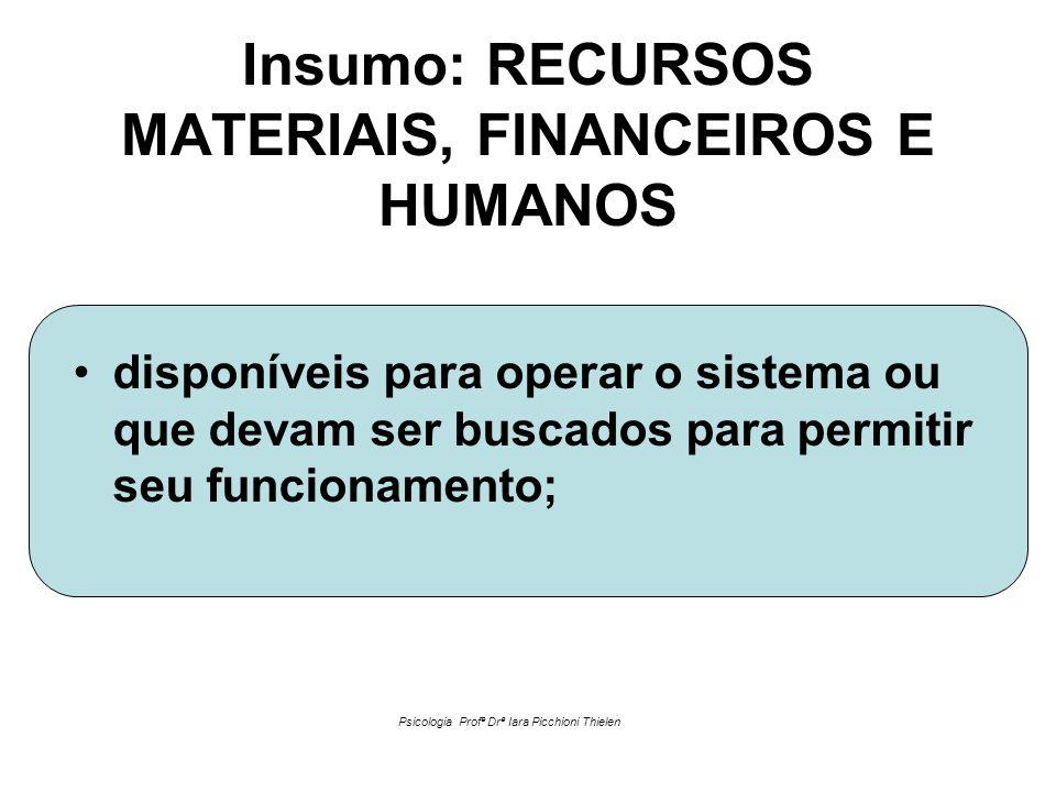 Insumo: RECURSOS MATERIAIS, FINANCEIROS E HUMANOS