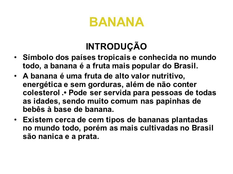 BANANA INTRODUÇÃO. Símbolo dos países tropicais e conhecida no mundo todo, a banana é a fruta mais popular do Brasil.