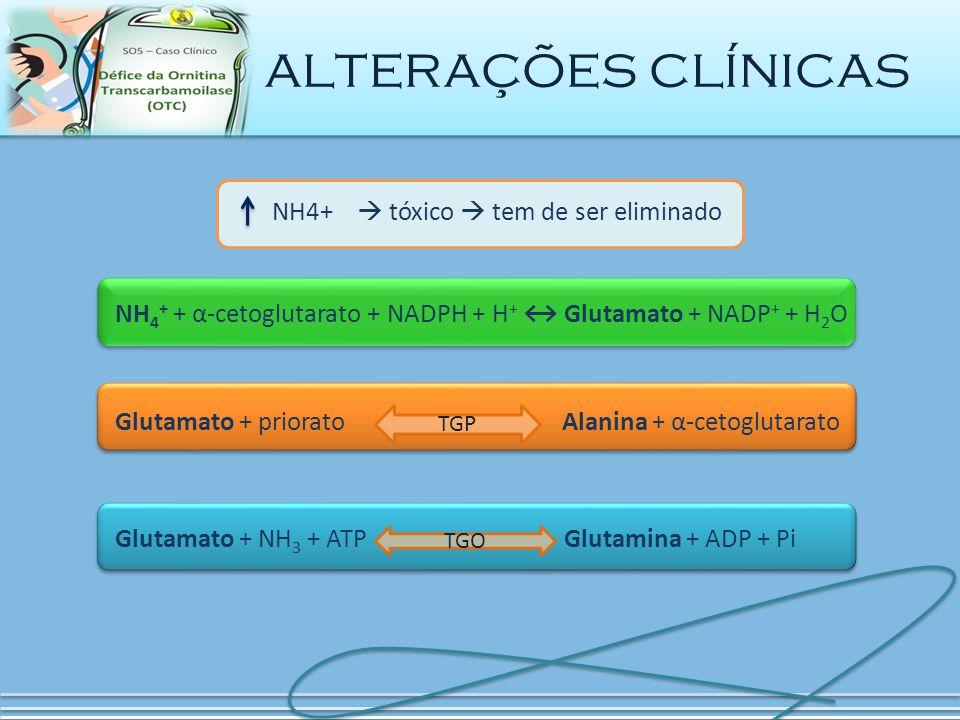 alterações clínicas NH4+  tóxico  tem de ser eliminado