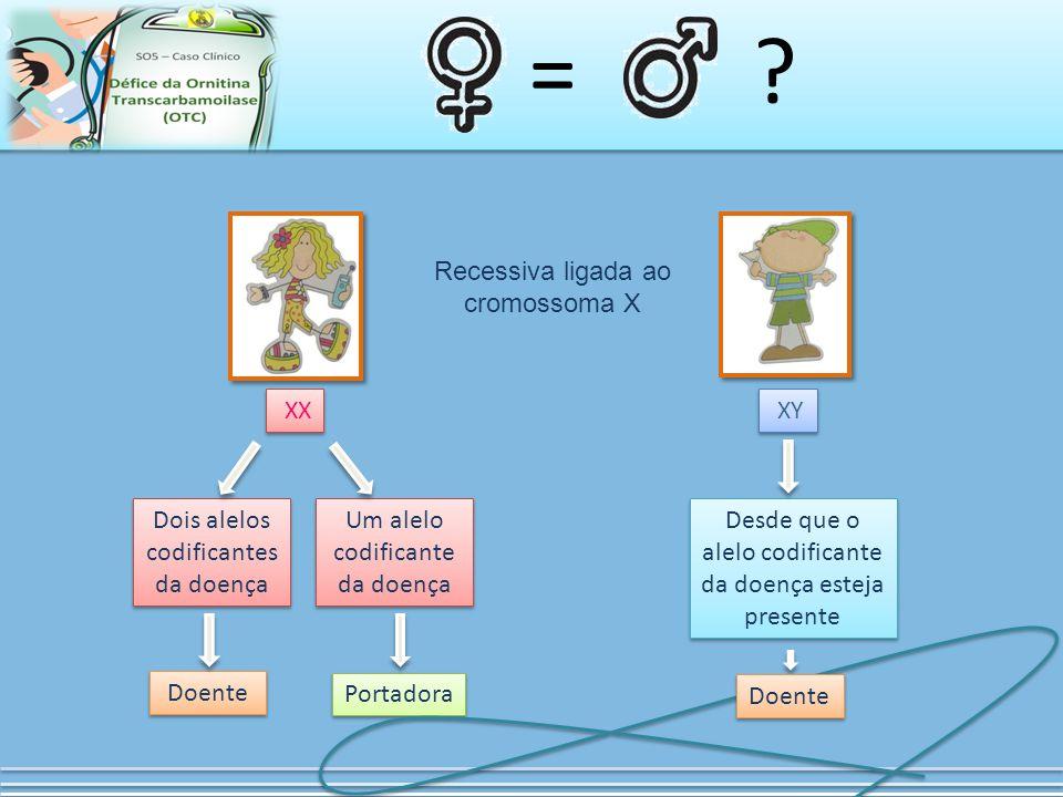 = Recessiva ligada ao cromossoma X XX XY