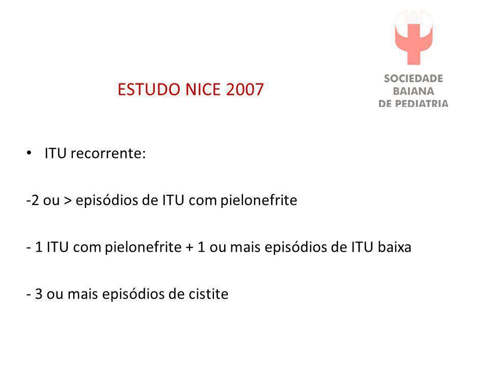 ESTUDO NICE 2007 ITU recorrente: