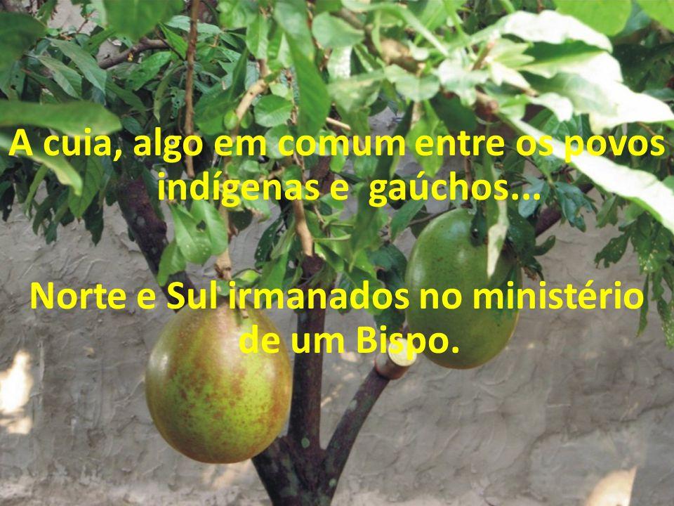 A cuia, algo em comum entre os povos indígenas e gaúchos