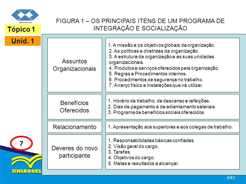 FIGURA 1 – OS PRINCIPAIS ITENS DE UM PROGRAMA DE INTEGRAÇÃO E SOCIALIZAÇÃO