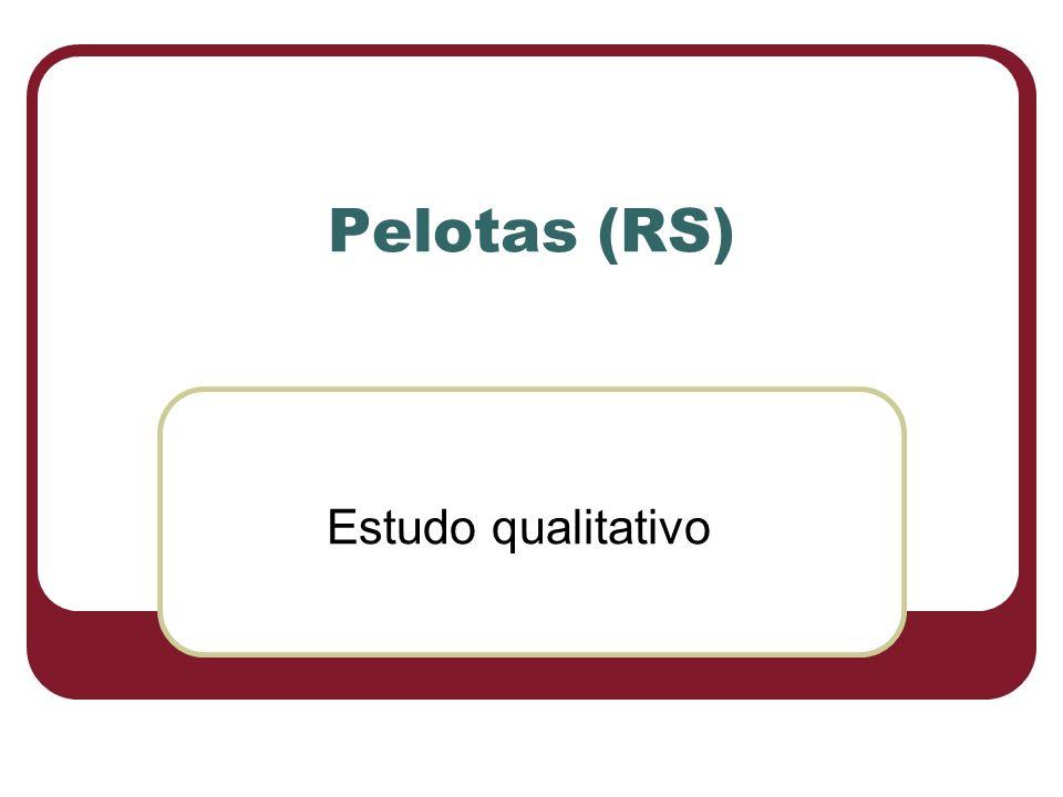 Pelotas (RS) Estudo qualitativo