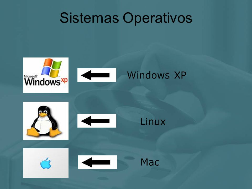 Sistemas Operativos Windows XP Linux Mac