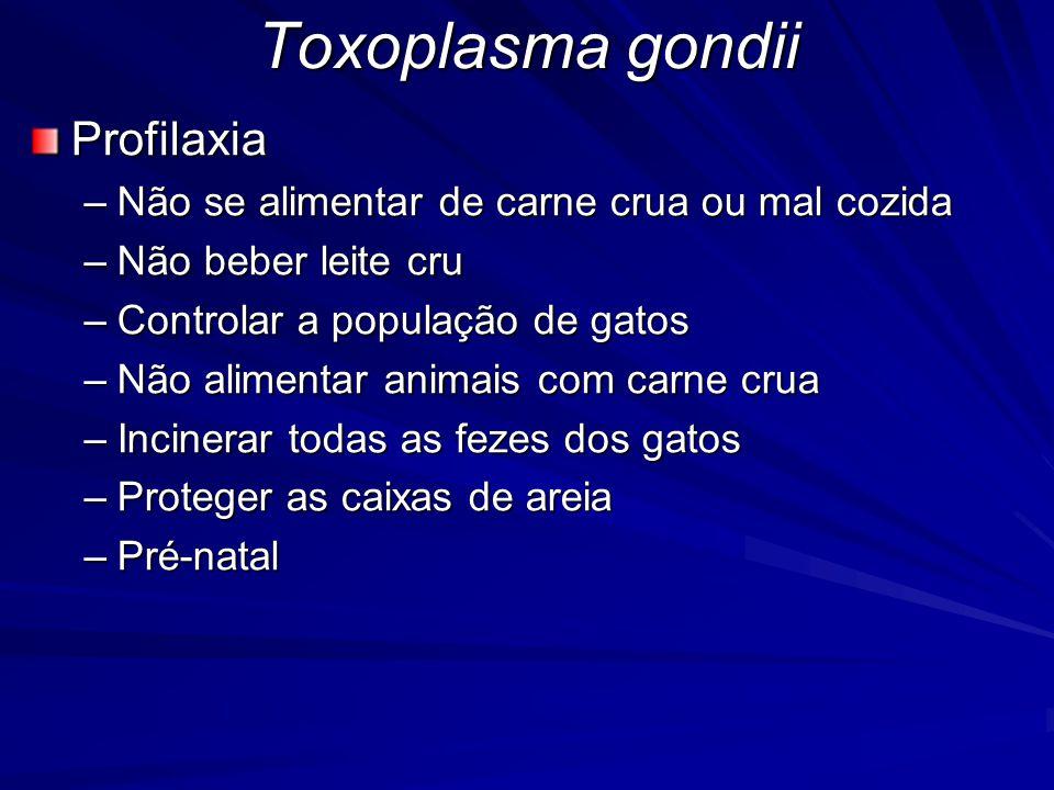 Toxoplasma gondii Profilaxia