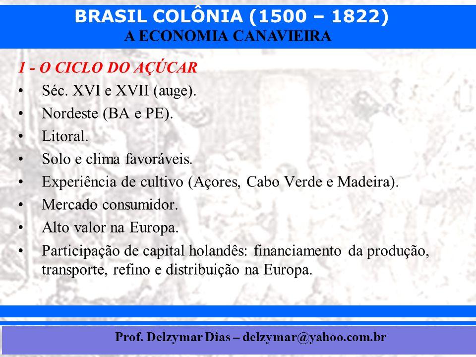 Prof. Delzymar Dias – delzymar@yahoo.com.br