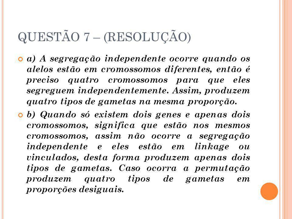 QUESTÃO 7 – (RESOLUÇÃO)