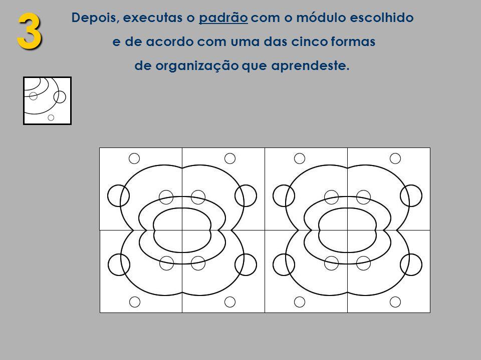 3 Depois, executas o padrão com o módulo escolhido