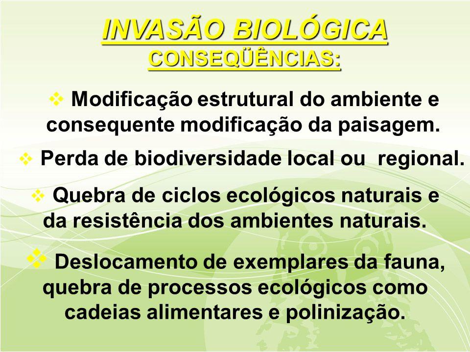 INVASÃO BIOLÓGICA CONSEQÜÊNCIAS:
