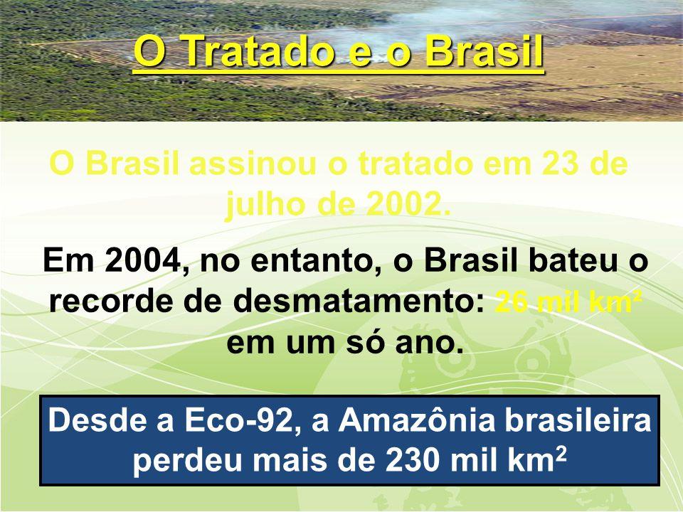 O Tratado e o Brasil O Brasil assinou o tratado em 23 de julho de 2002.