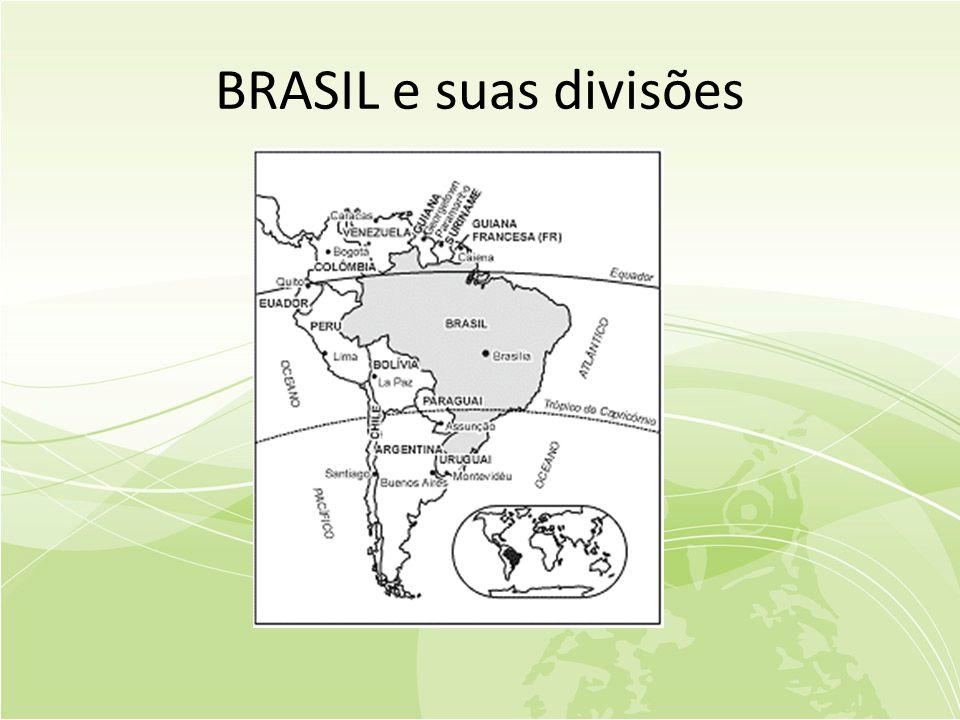 BRASIL e suas divisões