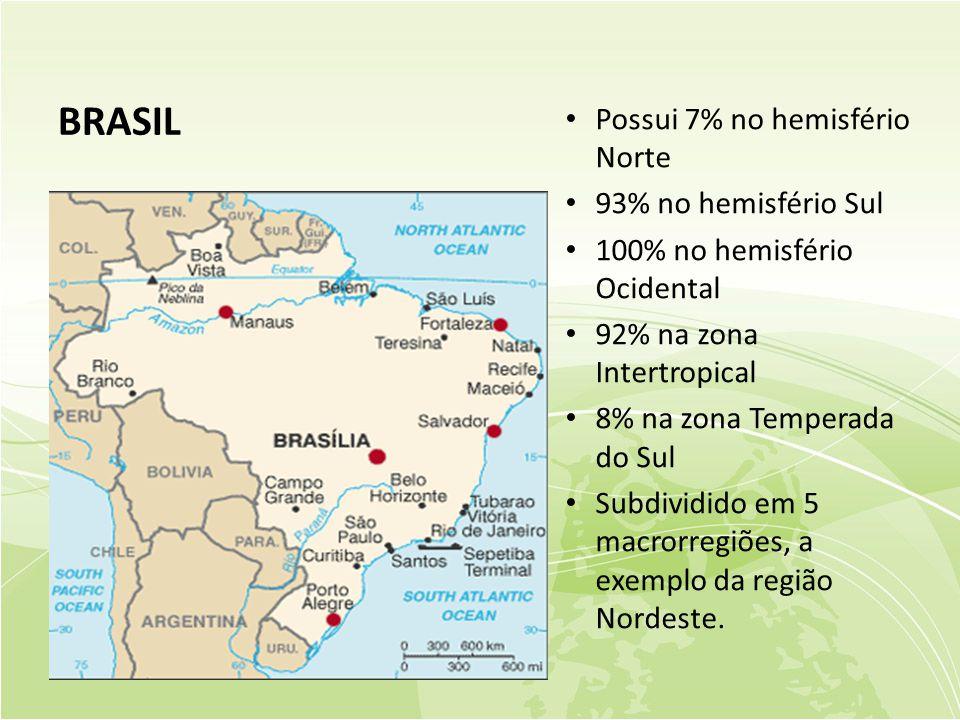 BRASIL Possui 7% no hemisfério Norte 93% no hemisfério Sul
