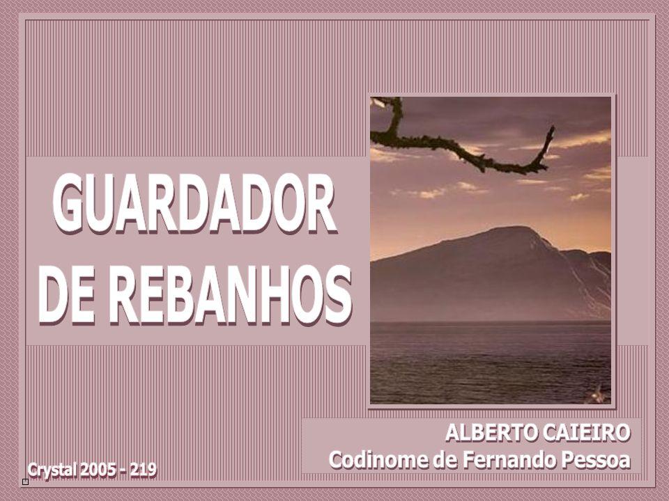 GUARDADOR DE REBANHOS Crystal 2005 - 219