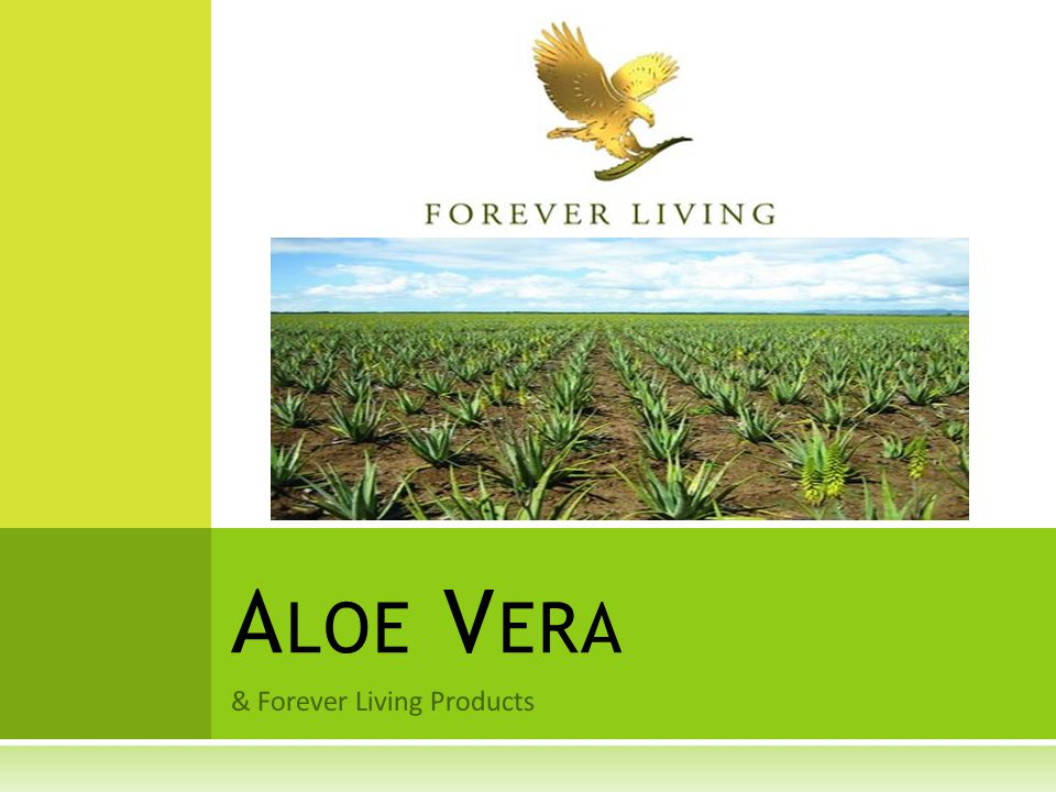 & Forever Living Products