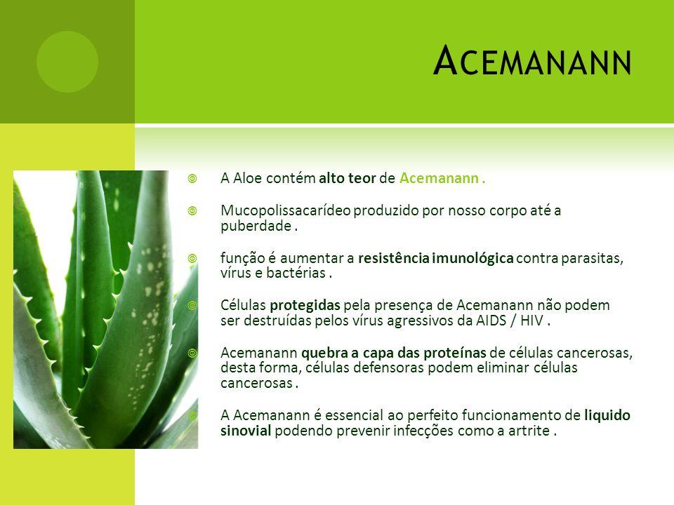 Acemanann A Aloe contém alto teor de Acemanann .