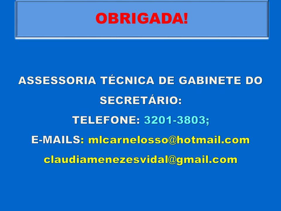 OBRIGADA! ASSESSORIA TÉCNICA DE GABINETE DO SECRETÁRIO: