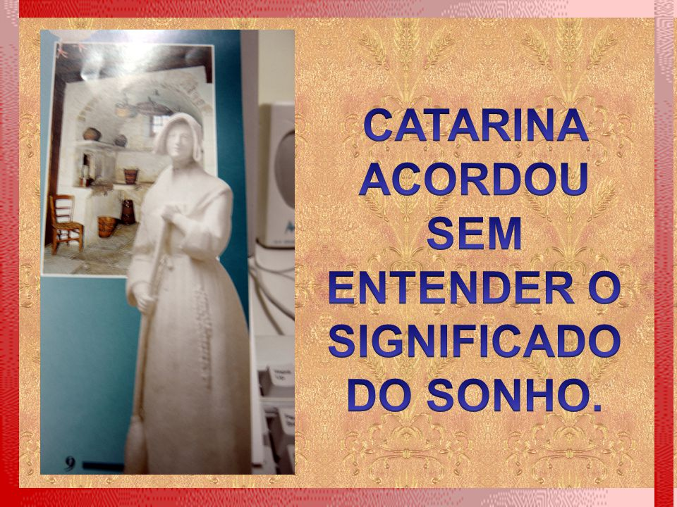 CATARINA ACORDOU SEM ENTENDER O SIGNIFICADO DO SONHO.