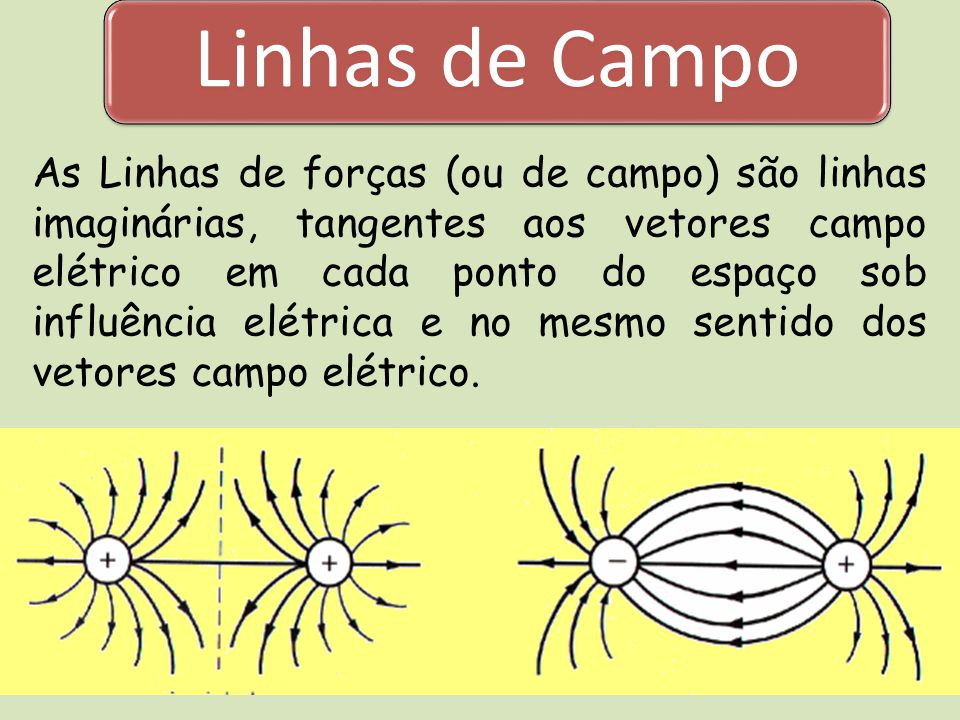 Linhas de Campo