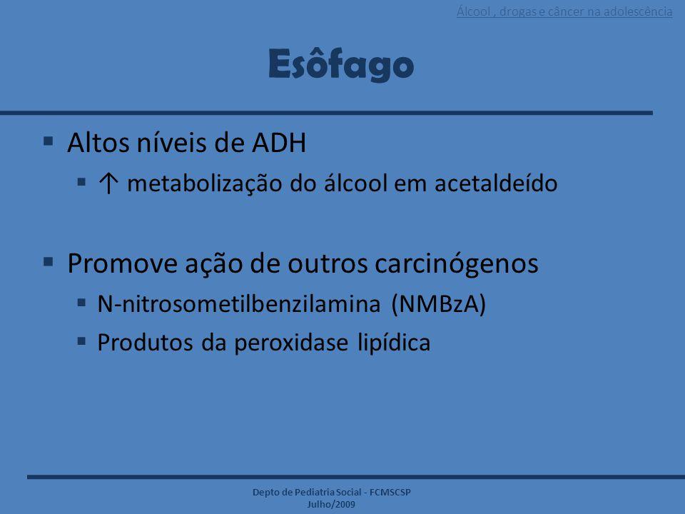 Esôfago Altos níveis de ADH Promove ação de outros carcinógenos