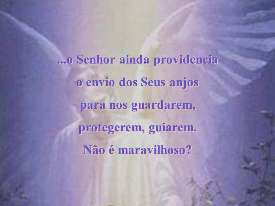 ...o Senhor ainda providencia para nos guardarem, protegerem, guiarem.
