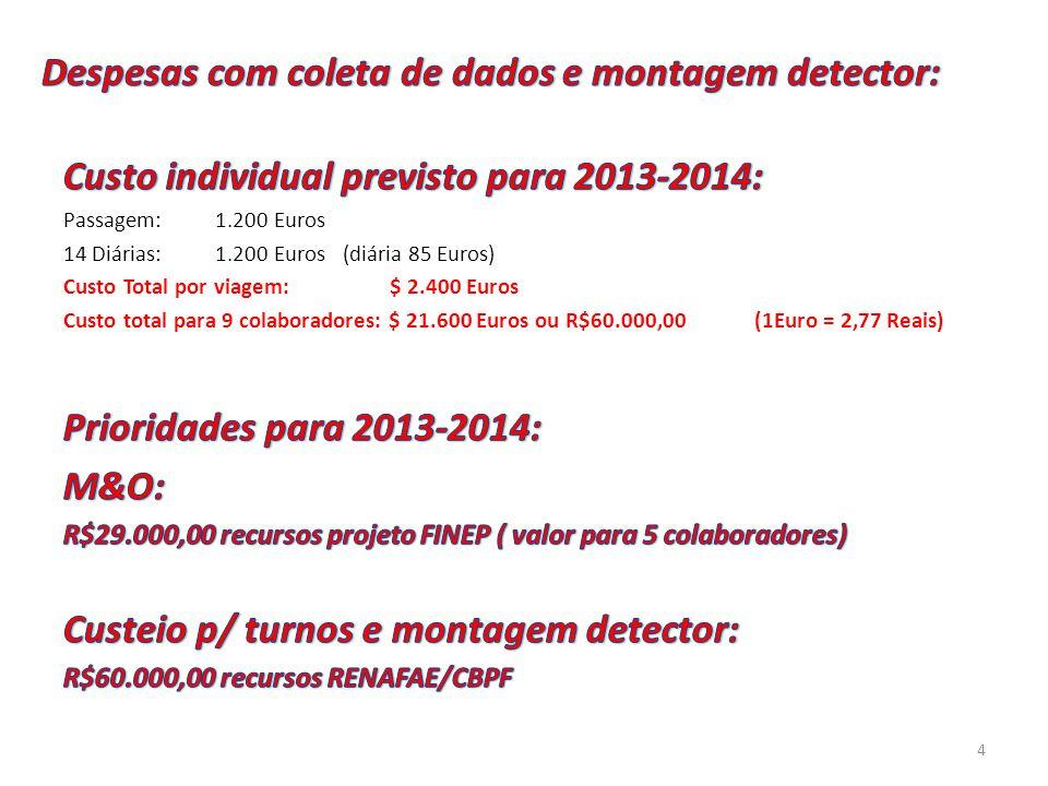 Despesas com coleta de dados e montagem detector: