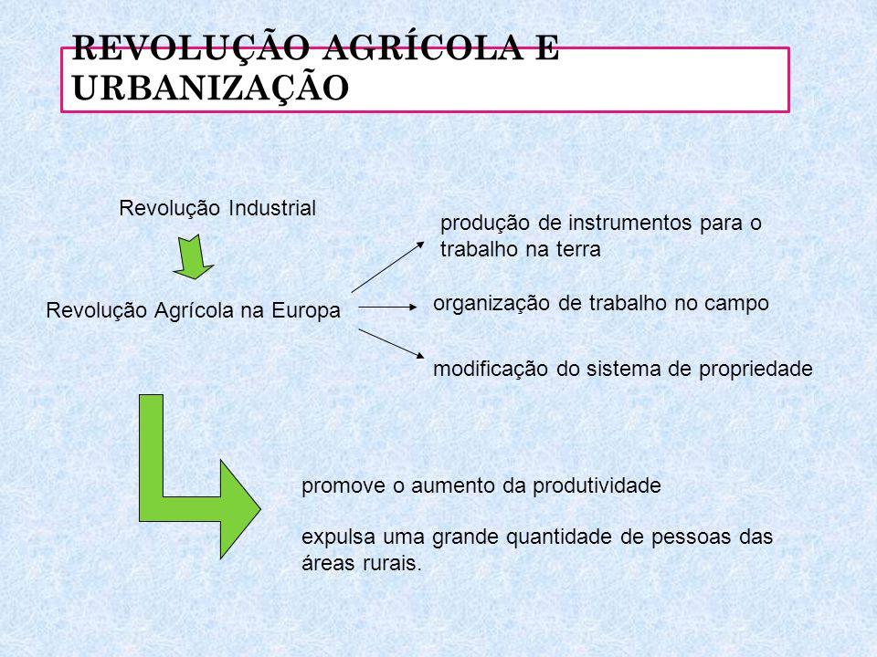 REVOLUÇÃO AGRÍCOLA E URBANIZAÇÃO