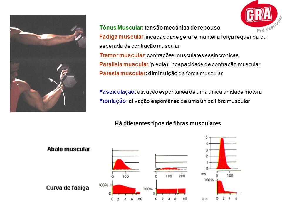 Tônus Muscular: tensão mecânica de repouso