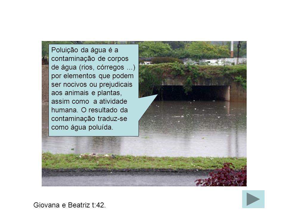 Poluição da água é a contaminação de corpos de água (rios, córregos