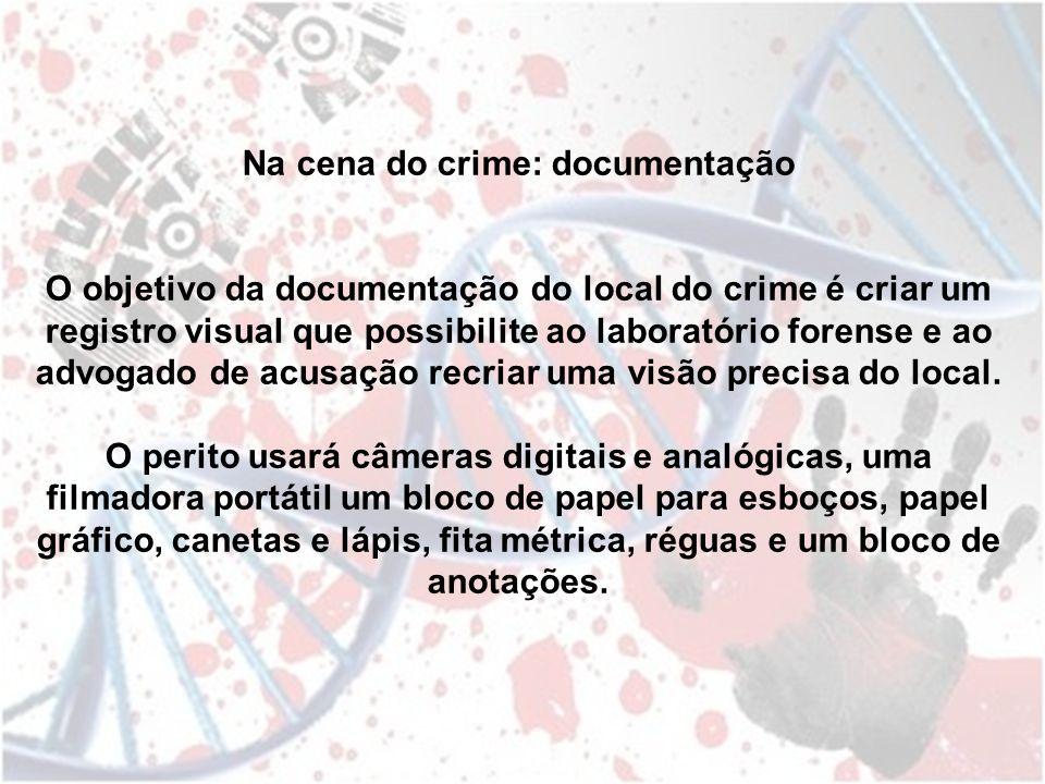 Na cena do crime: documentação