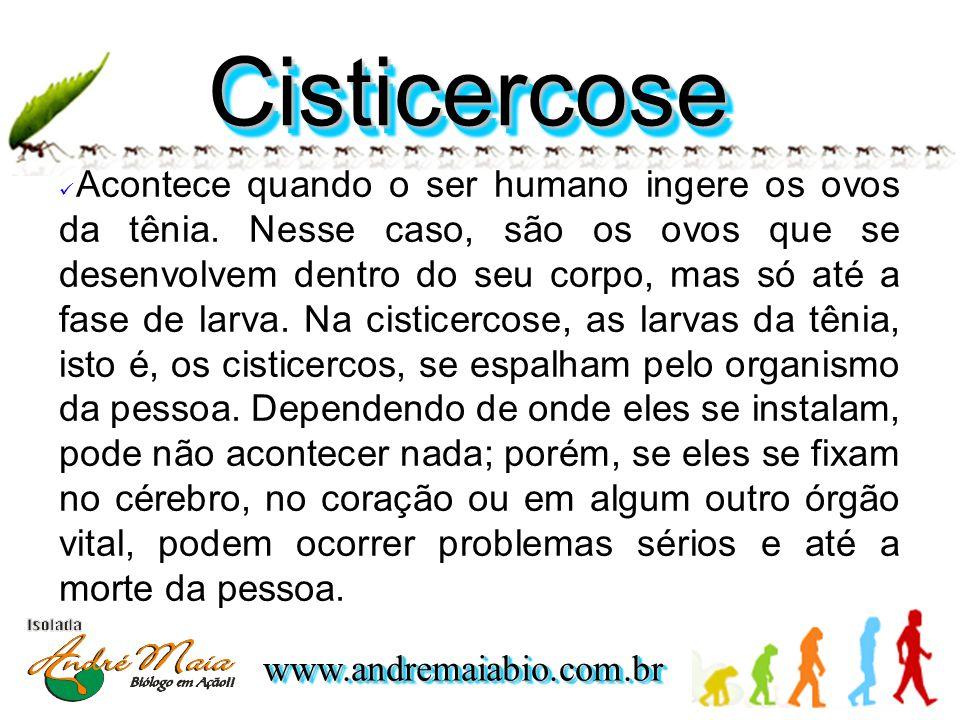 Cisticercose