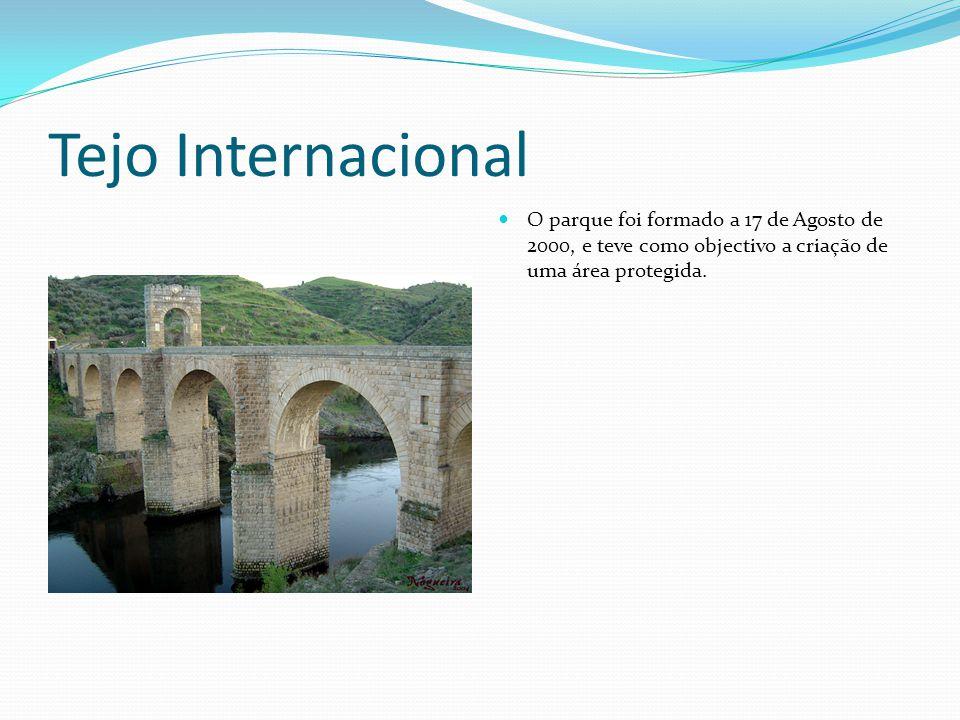 Tejo Internacional O parque foi formado a 17 de Agosto de 2000, e teve como objectivo a criação de uma área protegida.
