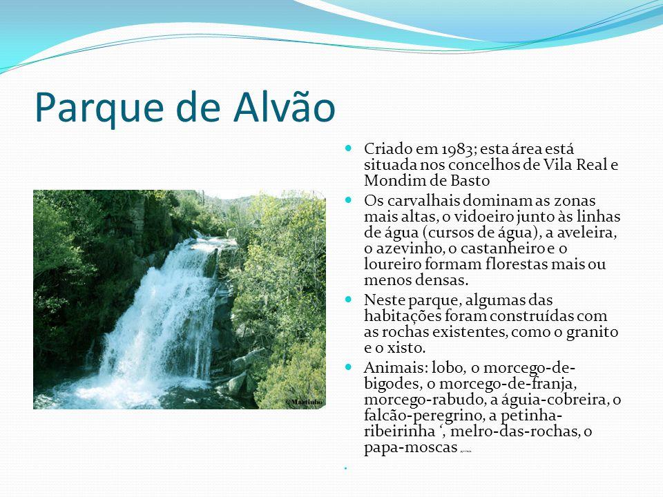 Parque de Alvão Criado em 1983; esta área está situada nos concelhos de Vila Real e Mondim de Basto.