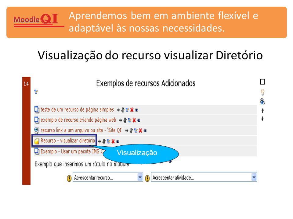 Visualização do recurso visualizar Diretório